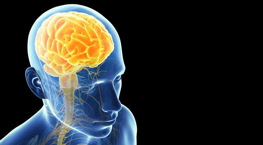 Rüyada beyin görmek