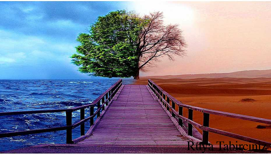 Rüyada yol görmek