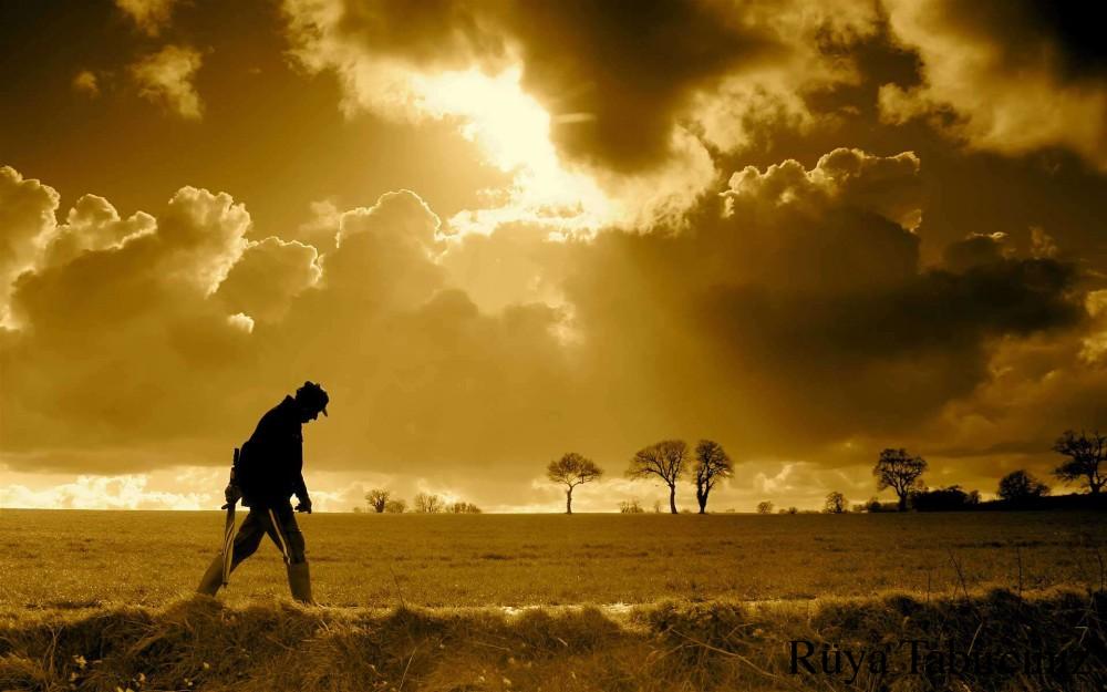 Rüyada yürümek